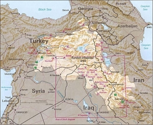 Kurds come from an area called Kurdistan which spans parts of Turkey, Syria, Iran and Iraq.